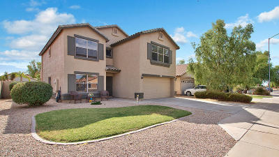 Mesa Single Family Home For Sale: 11435 E Pronghorn Avenue