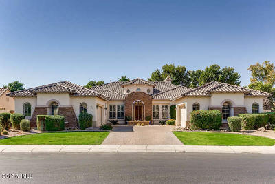 Litchfield Park Single Family Home For Sale: 4862 N Barranco Drive