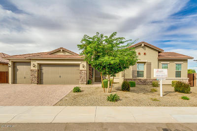 Chandler Single Family Home For Sale: 674 W Mulberry Drive