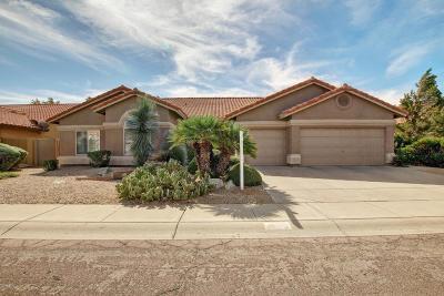 Phoenix Single Family Home For Sale: 4629 E Evans Drive E