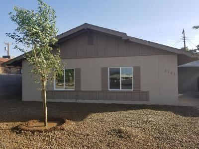 Phoenix Single Family Home For Sale: 5141 W Earll Drive