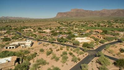 Gold Canyon AZ Residential Lots & Land For Sale: $139,000
