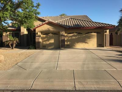 Peoria Single Family Home For Sale: 7972 W Foothill Drive