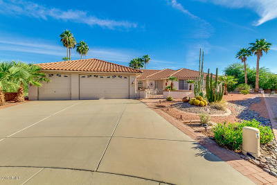 Mesa Single Family Home For Sale: 2789 Leisure World