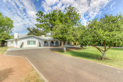 Mesa Single Family Home For Sale: 334 E Lehi Road