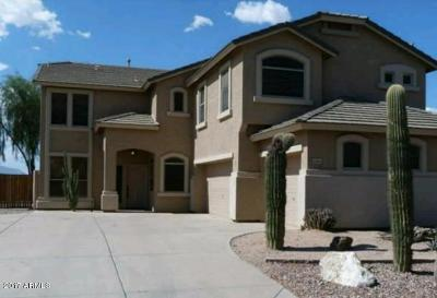 Maricopa County, Pinal County Single Family Home For Sale: 43644 W Courtney Drive