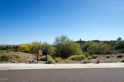 Peoria Residential Lots & Land For Sale: 8703 W Questa Drive