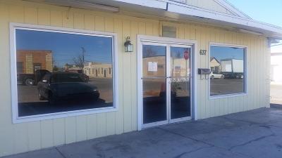 Douglas Commercial For Sale: 637 N H Avenue