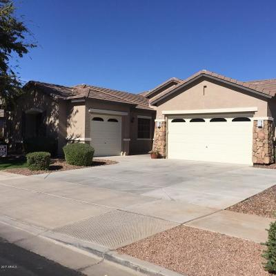 Queen Creek Single Family Home For Sale: 18466 E Cattle Drive