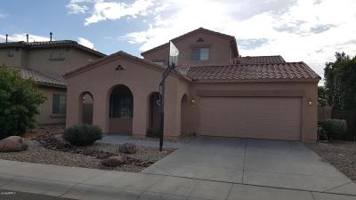 Litchfield Park Single Family Home For Sale: 13213 W Fairmont Avenue