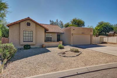 Fountain Hills Single Family Home For Sale: 14620 N Olympic Way