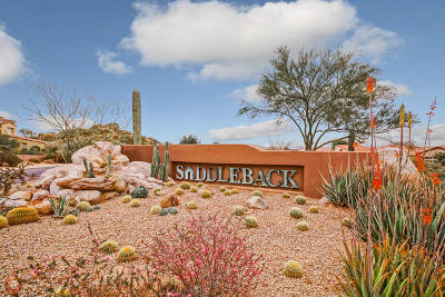 Scottsdale Single Family Home For Sale: 11520 E Bronco Trail