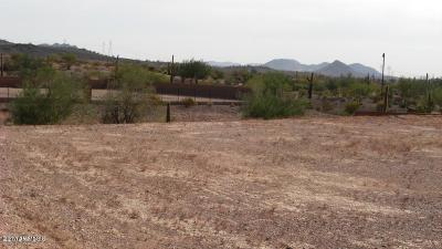 Peoria Residential Lots & Land For Sale: 30555 N 120th Lane
