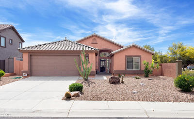 Superstition Foothills Single Family Home For Sale: 6683 E Hacienda La Noria Lane