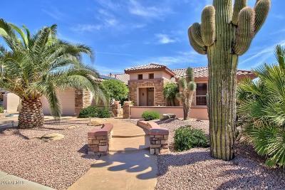 Surprise Single Family Home For Sale: 19473 N Desert Mesa Drive