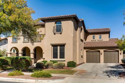 Buckeye Single Family Home For Sale: 20466 W Daniel Place