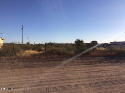 Douglas Residential Lots & Land For Sale: Xxx W Parnal Ave Avenue