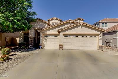 Mesa Single Family Home For Sale: 10632 E Kiva Avenue