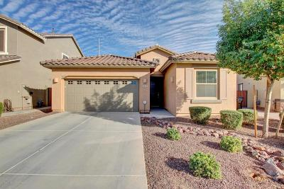 Single Family Home For Sale: 5547 S Joshua Tree Lane
