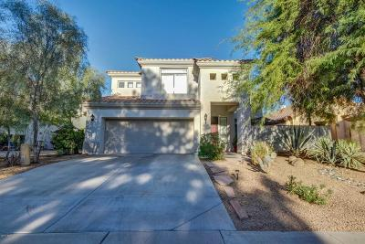 Litchfield Park Single Family Home For Sale: 4609 N Clear Creek Drive