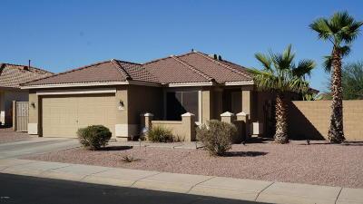 Phoenix Single Family Home For Sale: 918 E Beth Drive