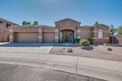 Chandler Single Family Home For Sale: 2005 E Buena Vista Drive