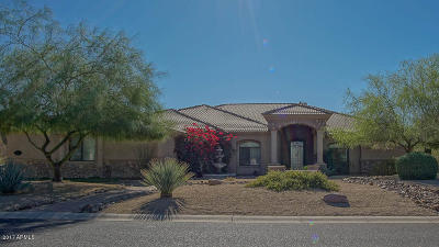 Mesa Single Family Home For Sale: 8235 E Kael Street