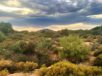 Scottsdale Residential Lots & Land For Sale: 37950 N 99th Way