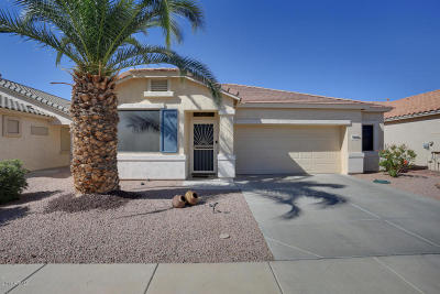 Surprise Single Family Home For Sale: 17022 N Javelina Drive