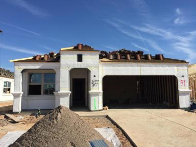 Tolleson Single Family Home For Sale: 5311 S 105th Lane