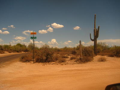 Scottsdale Residential Lots & Land For Sale: E Dale Lane