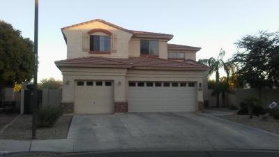 Surprise Single Family Home For Sale: 17255 W Carmen Drive