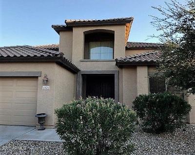Surprise Single Family Home For Sale: 17971 W Carmen Drive