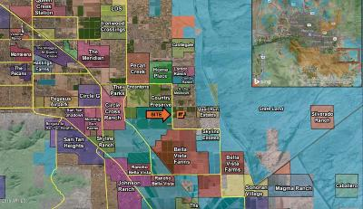 San Tan Valley AZ Residential Lots & Land For Sale: $1,771,520