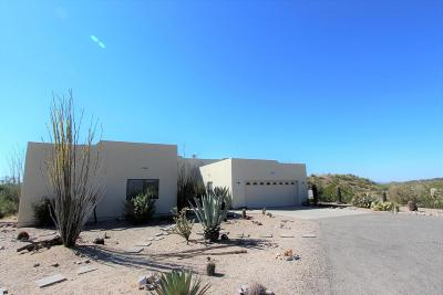 Wickenburg Single Family Home For Sale: 52023 N 295th Avenue