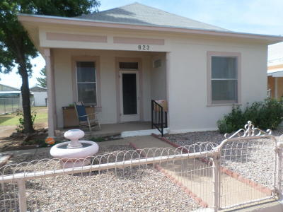 Douglas Single Family Home For Sale: 823 E 17th Street