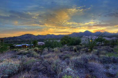 Fountain Hills Residential Lots & Land For Sale: 15517 E Golden Eagle Boulevard