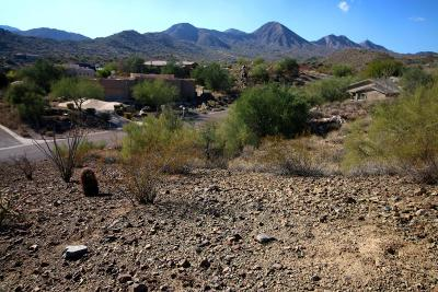 Fountain Hills Residential Lots & Land For Sale: 15811 N Norte Vista