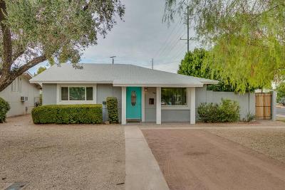 Phoenix Single Family Home For Sale: 1146 E Fern Drive N