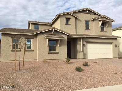 Peoria Single Family Home For Sale: 9816 W Lariat Lane