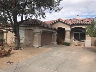 Cave Creek Single Family Home For Sale: 4228 E Rancho Caliente Drive
