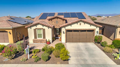 San Tan Valley Single Family Home For Sale: 842 E Harmony Way