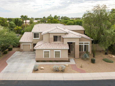 Chandler Single Family Home For Sale: 2167 W Remington Drive