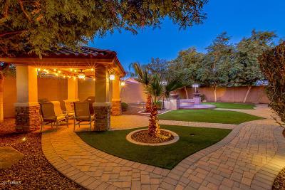 Chandler Single Family Home For Sale: 3966 E Beechnut Place