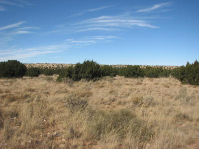 Heber AZ Residential Lots & Land For Sale: $27,500
