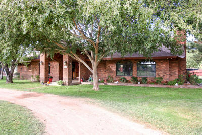 Chandler Single Family Home For Sale: 1650 E Twin Acres Drive