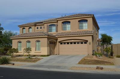 Surprise Single Family Home For Sale: 16092 W Poinsettia Drive
