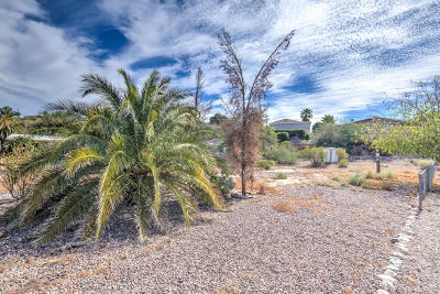 Queen Valley Residential Lots & Land For Sale: 299 W Morris Drive