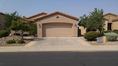 Gilbert Single Family Home For Sale: 4074 E Rakestraw Lane