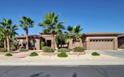 Surprise Single Family Home For Sale: 20010 N Canyon Whisper Drive